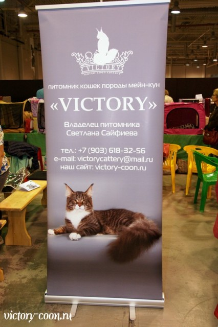 Rainbow XXXL*RUS, VICTORY, Ярославль, сентябрь 2015