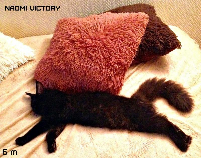 NAOMI VICTORY, 6 месяцев