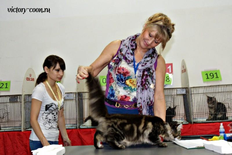 Ultra Victory, КЛК Москва, 23-24 июля 2016