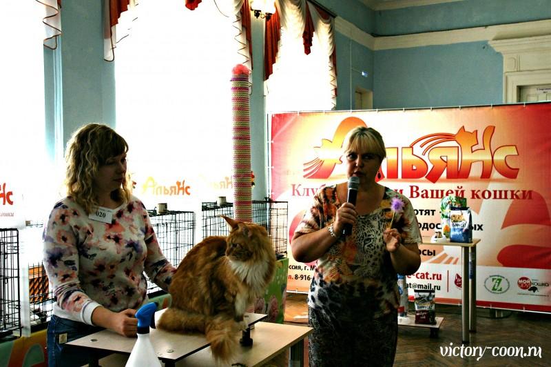 Barney Victory, 27-28 августа 2016, Летний Альянс в Новомосковске