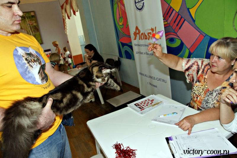 Ultra Victory, 27-28 августа 2016, Летний Альянс в Новомосковске