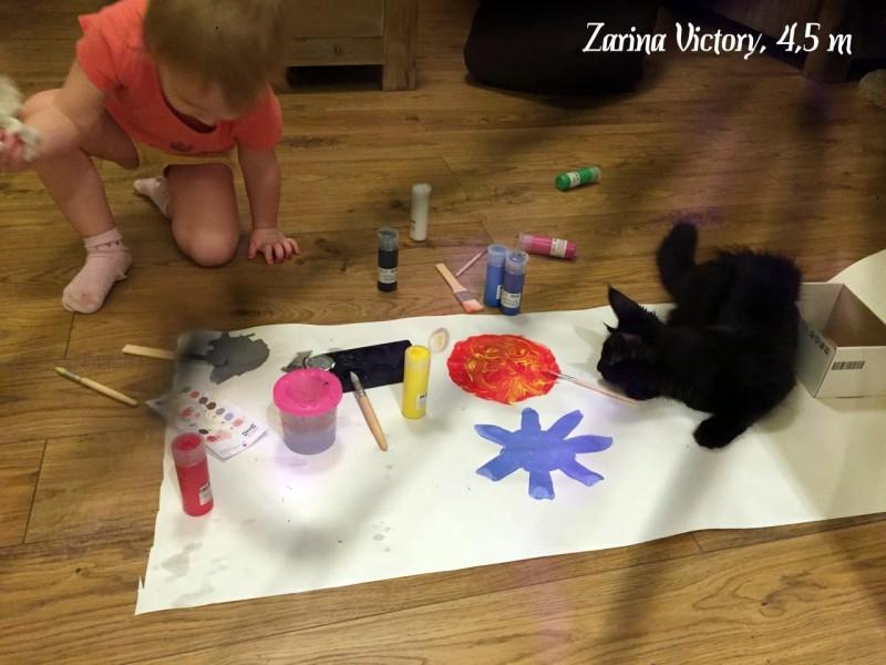 Zarina Victory, 4,5 месяца