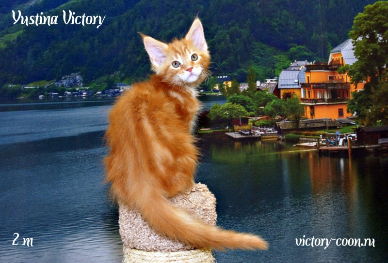 Yustina Victory, 2 месяца