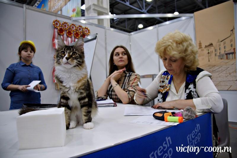 КЭТСБУРГ - 2017, VICTORY