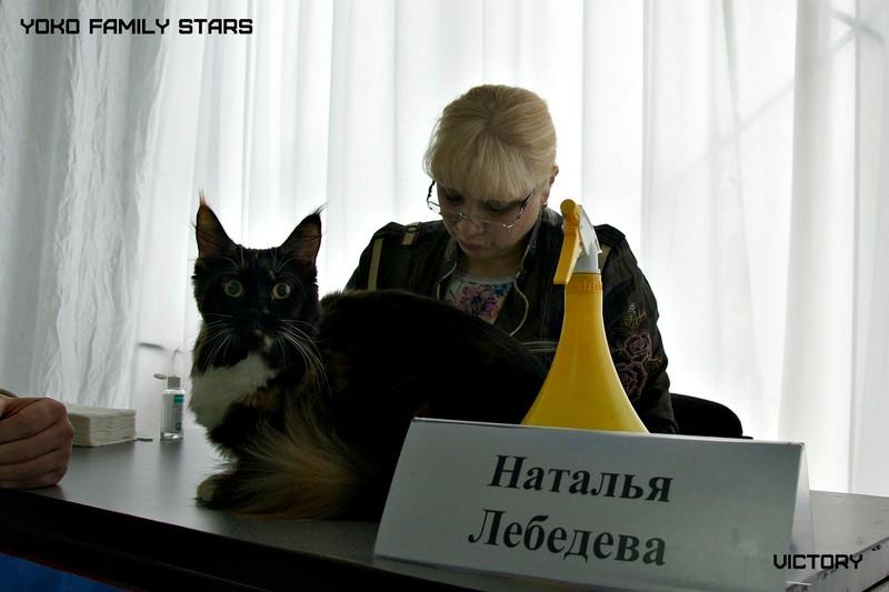Yoko Family Stars, Зимний Гла-Мурр -2015, VICTORY