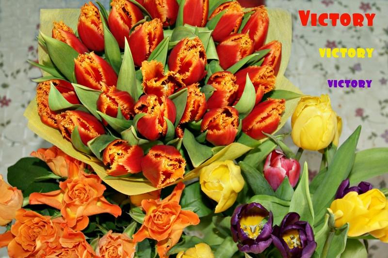 КЭТСБУРГ, 7-8 марта 2015, VICTORY